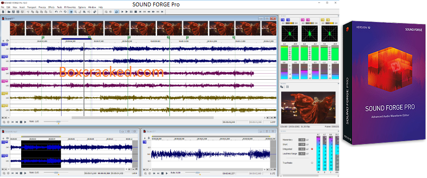 Sound Forge Pro Torrent